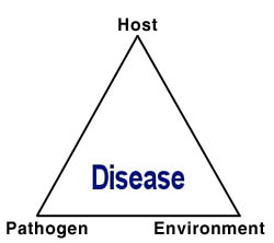 graphic freeuse library Vector born disease triangle. The a plant pathological
