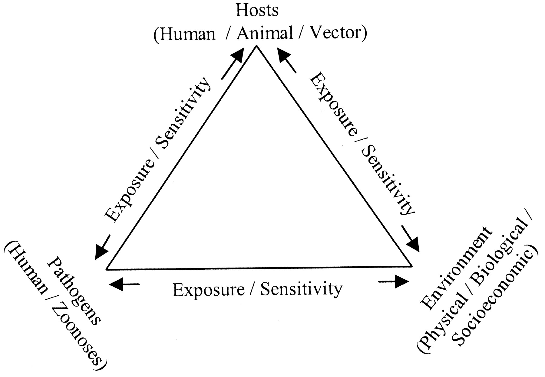 freeuse stock Global change and human. Vector born disease triangle