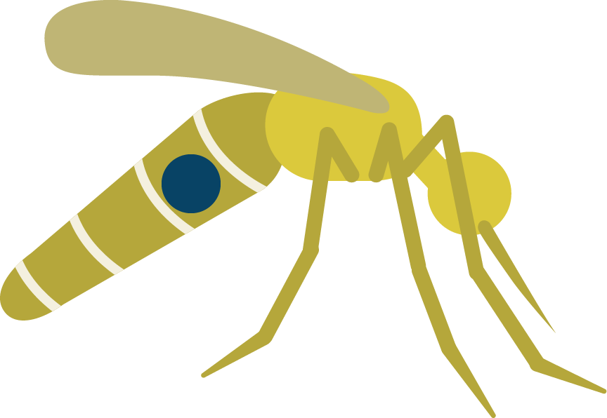 clipart royalty free download Little fly pebblelabs us. Vector born mosquito