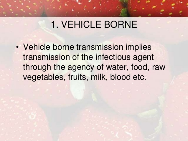 graphic free download Vector born vehicle borne. Dynamics of disease transmission