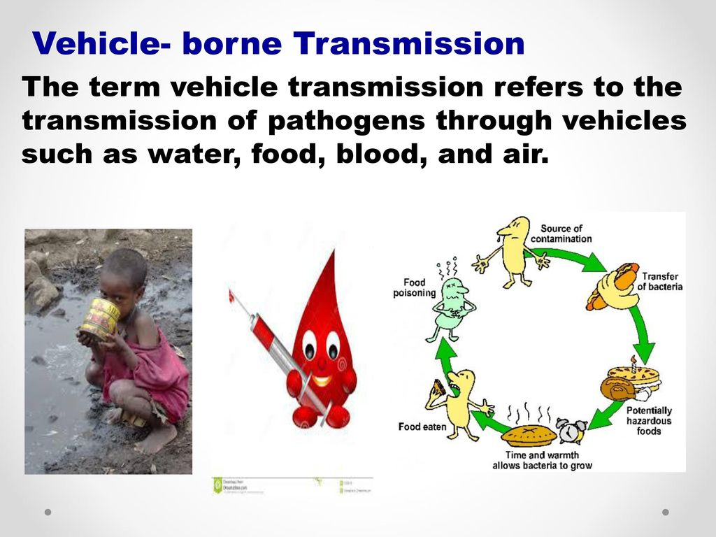 graphic free stock Vector born vehicle borne. Principles of communicable diseases