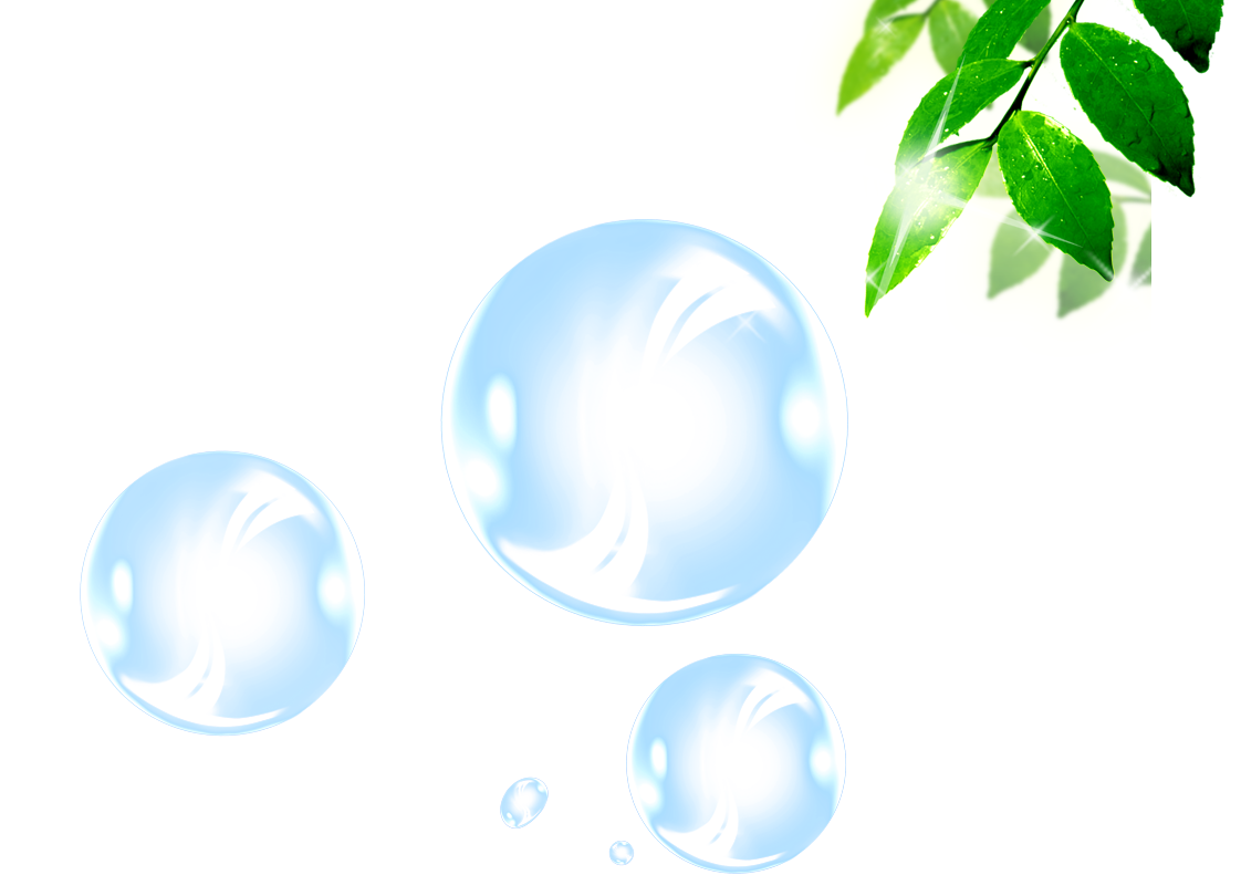 banner library library Vector bubble sphere. Blister bamboo transprent