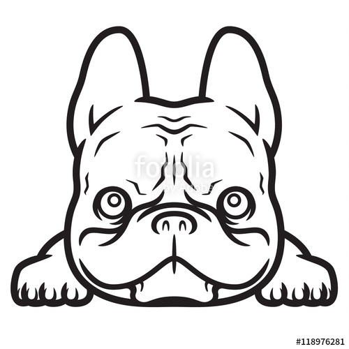 clip Bad french stock image. Vector bulldog frenchie