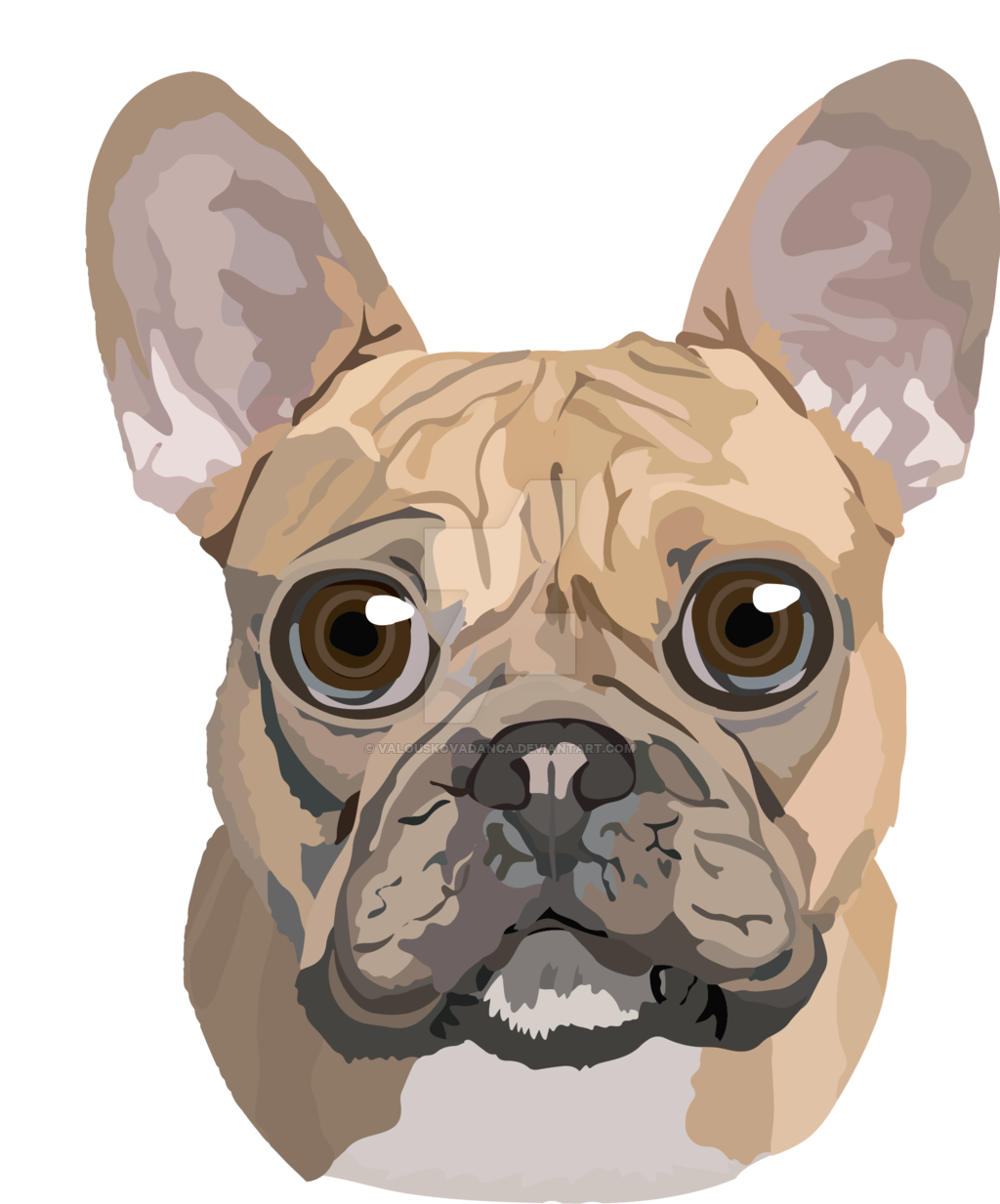 image library stock French toy boston terrier. Vector bulldog frenchie