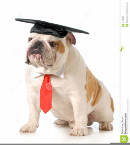 clipart royalty free download Vector bulldog graduation cap clipart. Free images at clker