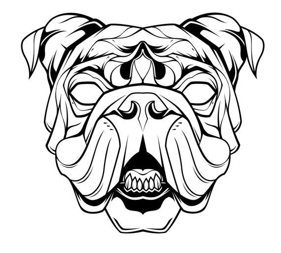 image royalty free . Vector bulldog head