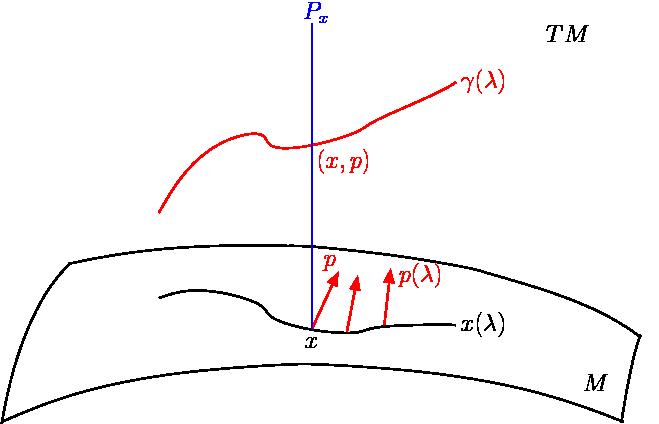 clip library Tangent bundle formulation of. Vector bundles bifurcated