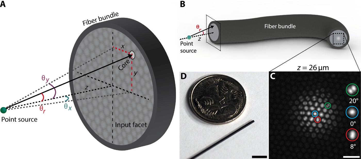 jpg library Optical fiber ultra slim. Vector bundles endoscope