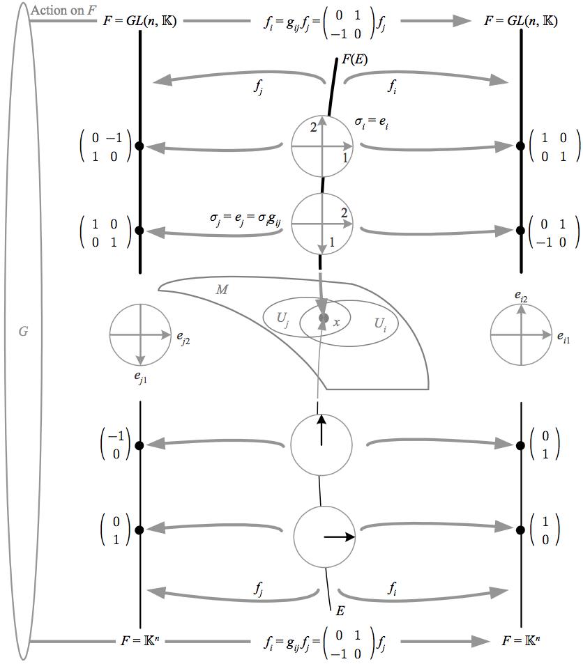 picture transparent stock Vector bundles principal. Frame mathematics for physics