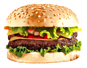 svg stock Burger Food PNG
