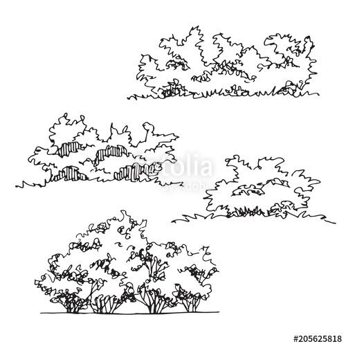 vector free Set of hand drawn. Vector bushes drawing