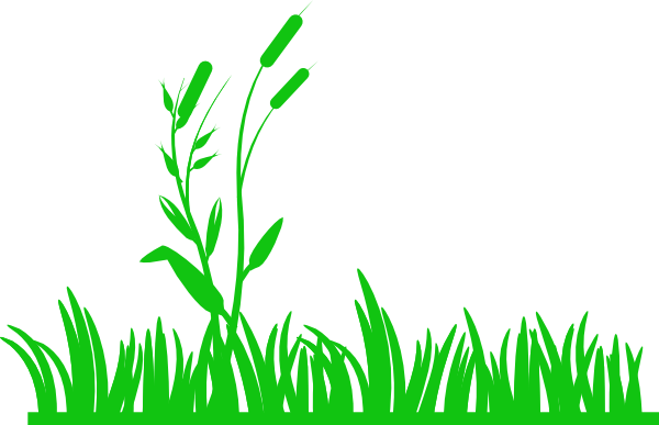 clipart royalty free stock Green Grass With Reeds Clip Art at Clker