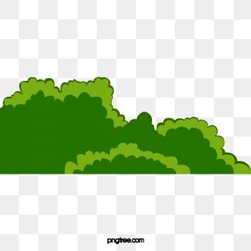 vector library library Png psd and clipart. Vector bushes shrub