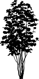 jpg black and white library Vector bushes silhouette. Plants and trees silhouettes