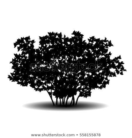 banner free Bush png free transparent. Vector bushes silhouette