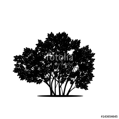 banner free Vector bushes silhouette. Bush with leaves and