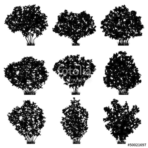 banner black and white download Shrubs silhouettes stock image. Vector bushes silhouette