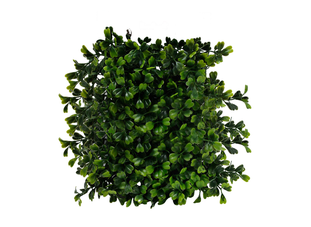 clip art royalty free  shrub png for. Vector bushes top view