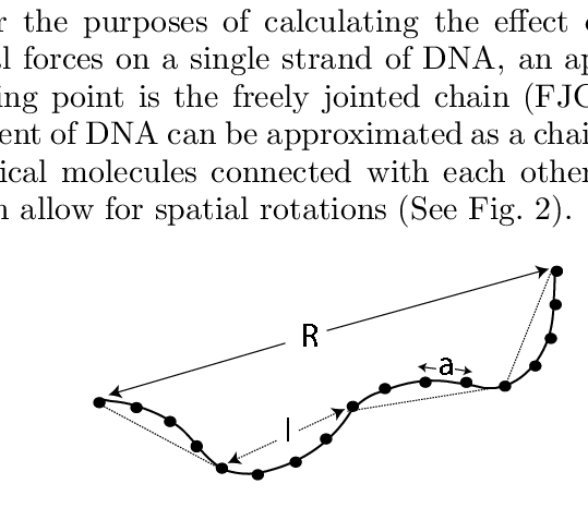png transparent stock The Gaussian chain in which the monomeric units are separated by a