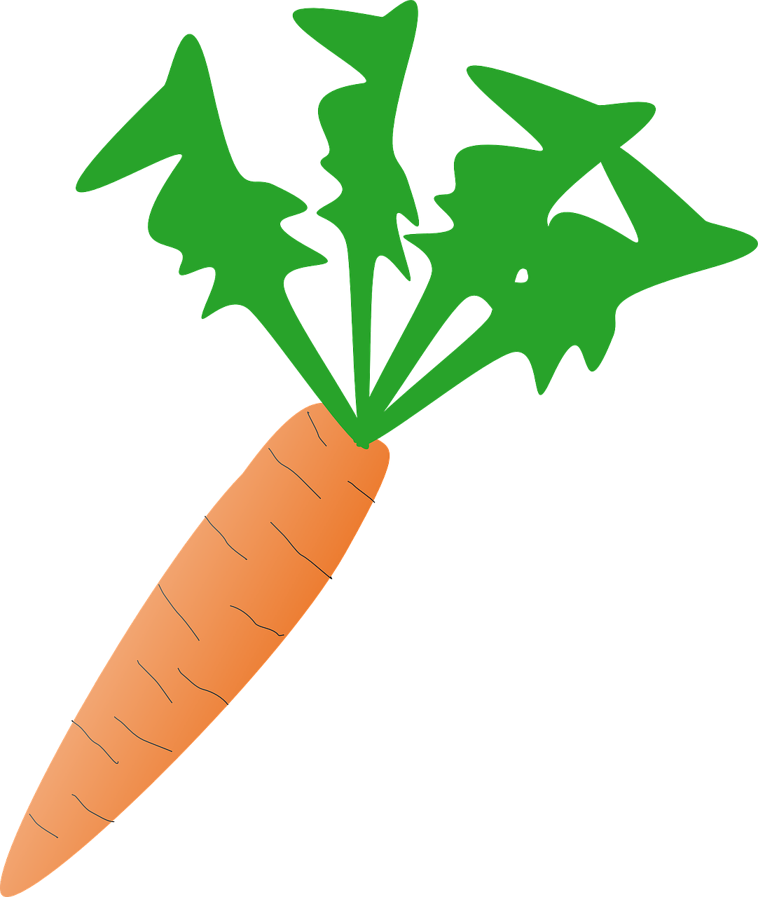graphic black and white library Vegetable fresh healthy organic. Vector carrot veg
