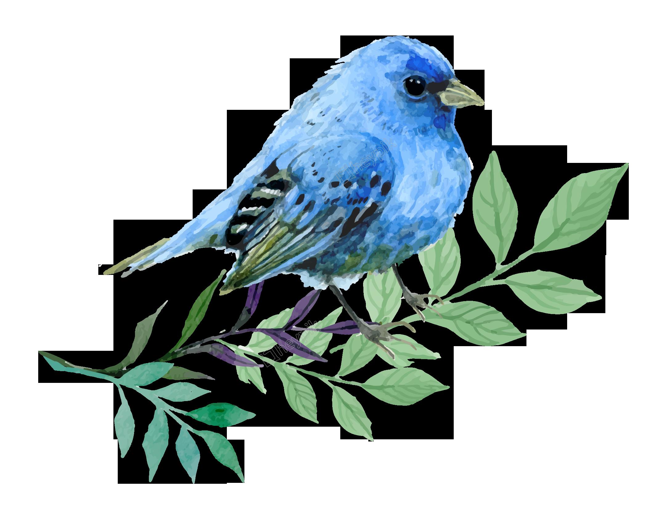 image library stock Hand painted cartoon watercolor. Vector cartoons bird