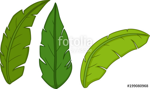 jpg library library Cute tropical cartoon stock. Vector cartoons leaf