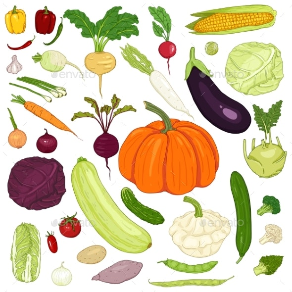 clip art royalty free library Vector cartoons vegetable. Set of cartoon vegetables