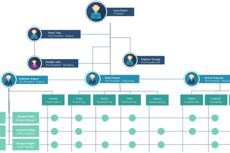 vector library stock Free organizational template resume. Vector chart organization