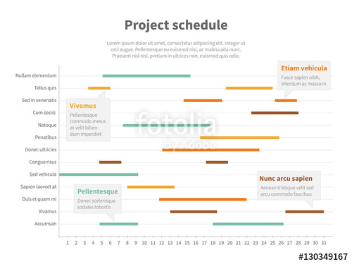 vector library library Vector chart timeline. Project plan schedule with