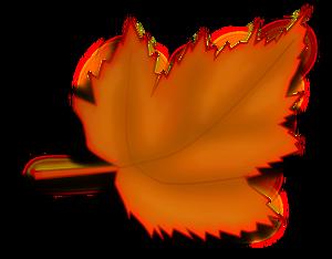banner Vector color orange. Publicdomainvectors org illustration of
