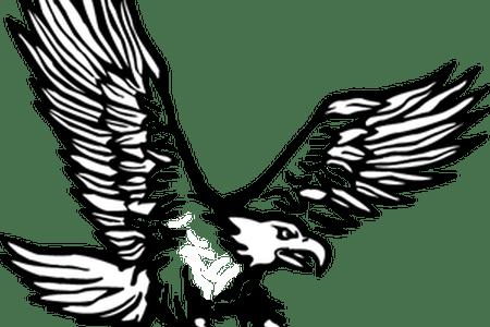 svg transparent library Full hd wallpaper eagle. Vector concepts hawk