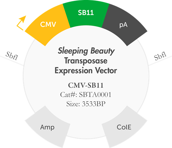 royalty free B mogen biotechnologies inc. Vector contains label