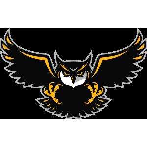 picture free stock Firebirds sports logo google. Vector crest owl