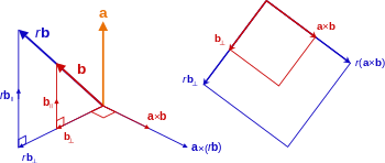 freeuse Vector defintion cross product. Scalar multiplication left decomposition