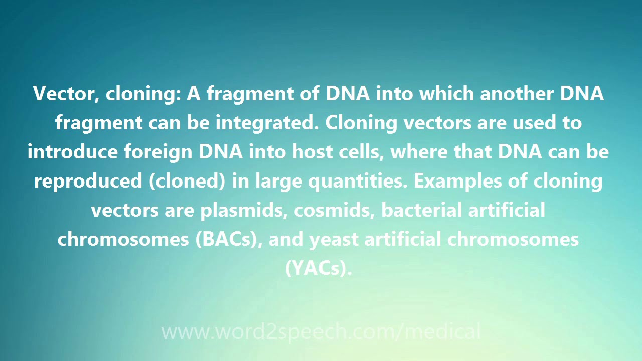 svg freeuse stock Cloning definition and pronunciation. Vector defintion medical