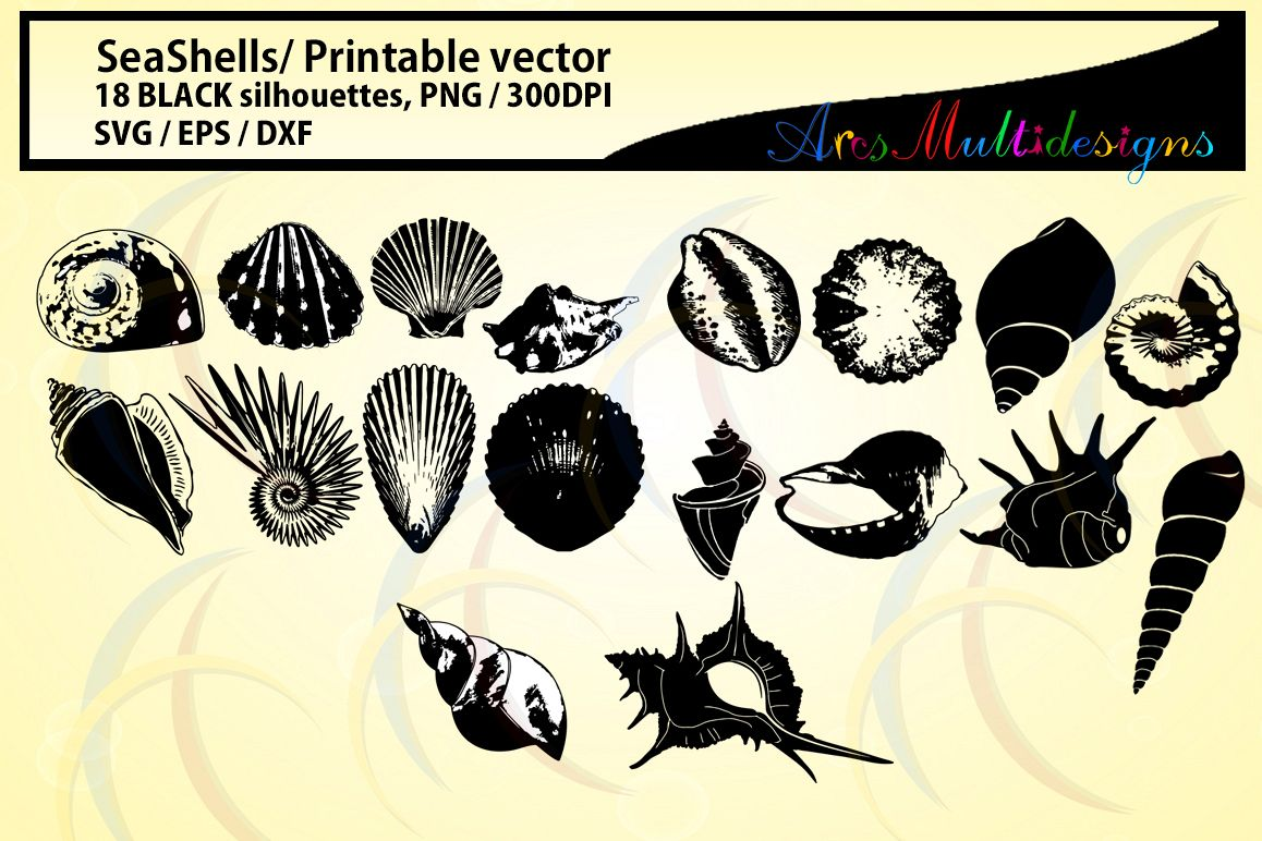 clip art royalty free download Vector dividers seashell. Seashells silhouette sea shell