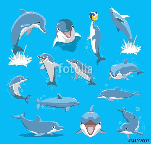vector freeuse download Vector dolphin bottlenose. Ball cute cartoon illustration