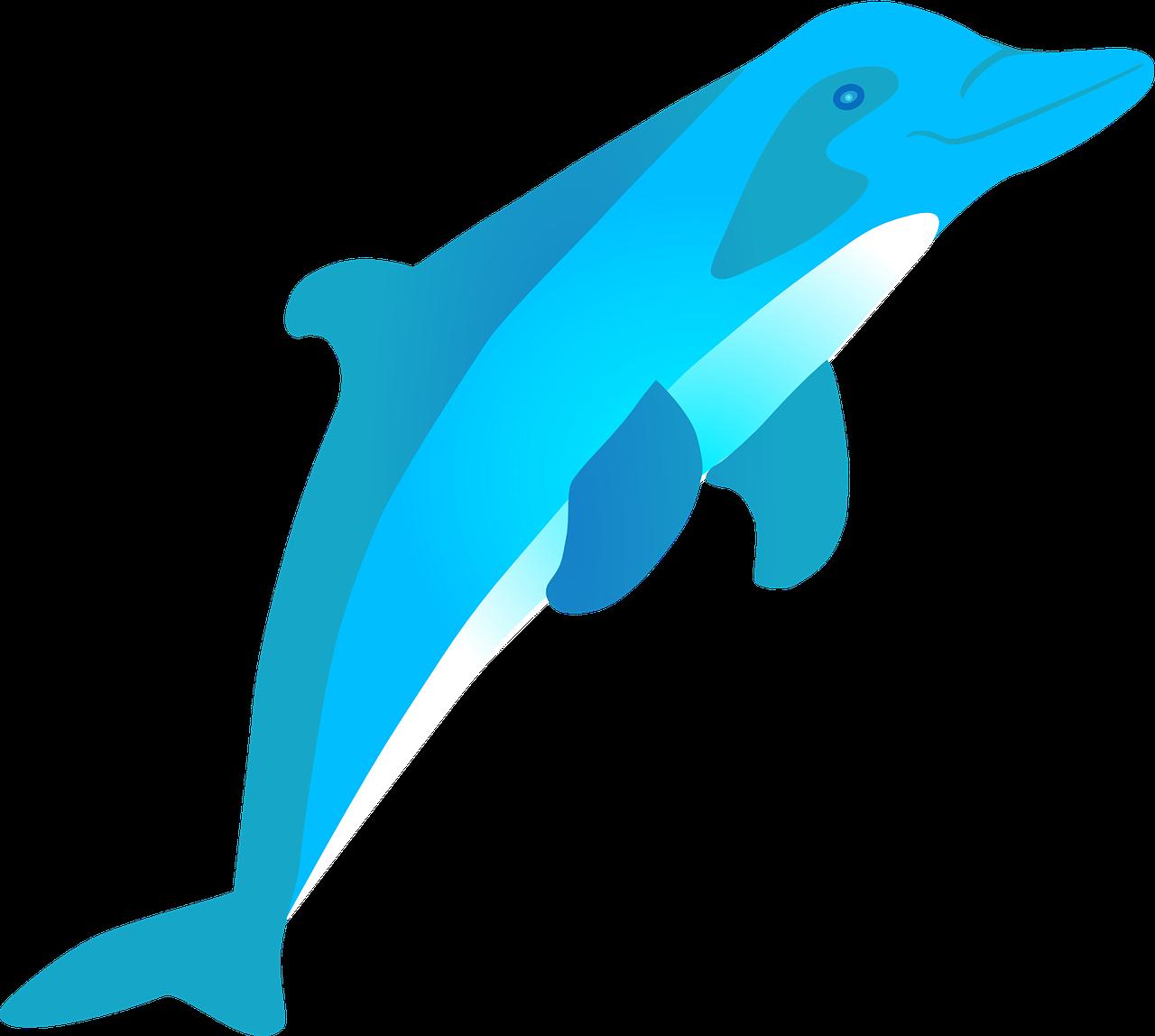 vector Vector dolphin coat arm. Jumping mammal water marine