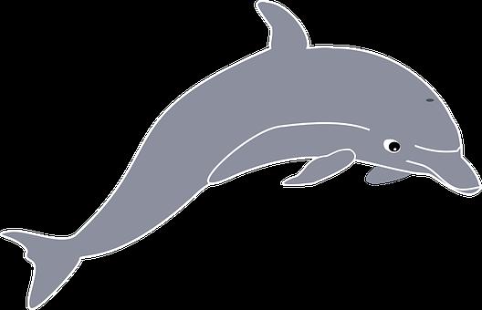 clip art library Vector dolphin kawaii. Delfin hoppe dyr hvaler