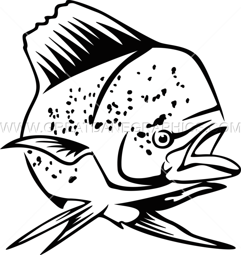 vector library Vector dolphin mahi. Production ready artwork for