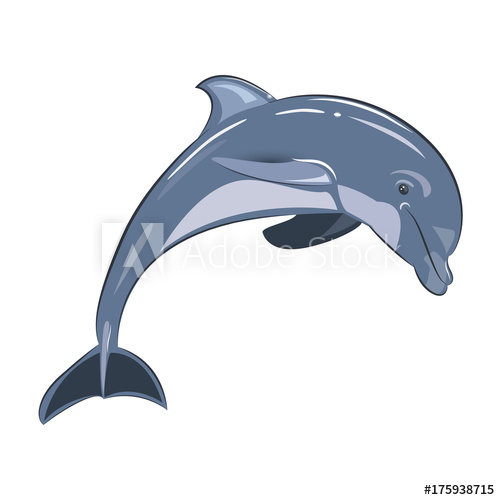 jpg library library Vector dolphin transparent. Illustration of blue on