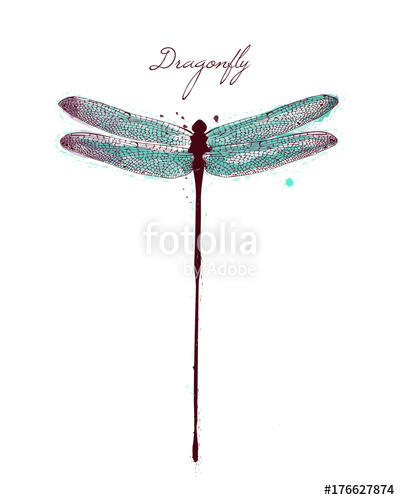clip royalty free download Watercolor drawing dragonfly