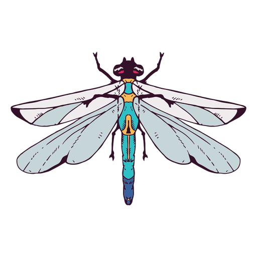vector royalty free download Dragonfly illustration