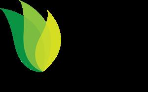 png stock Leaves logo vectors free. Vector emblem leaf