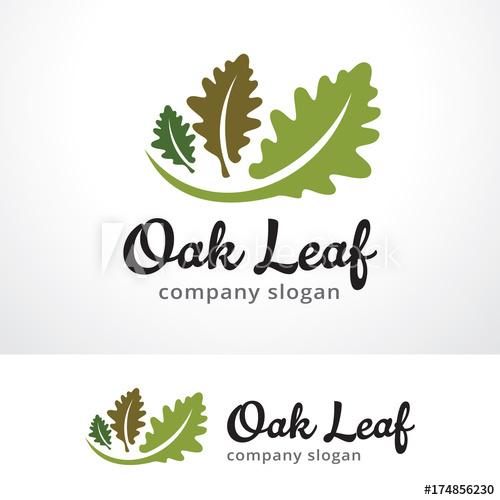 png library download Vector emblem leaf. Oak logo template design