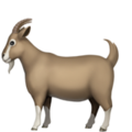 graphic library Vector emojis goat.  on apple ios
