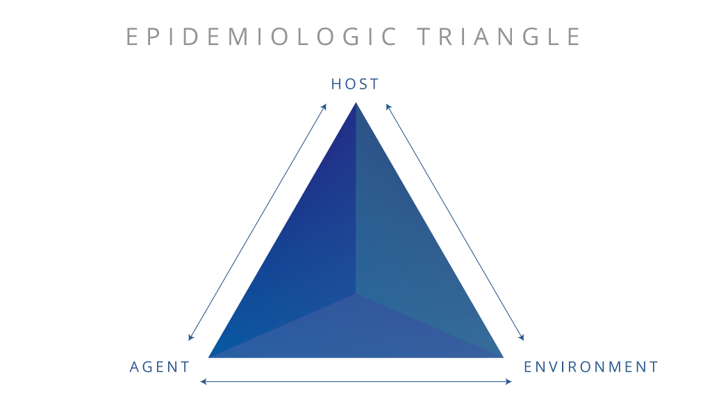 graphic transparent download What is the Epidemiologic Triangle