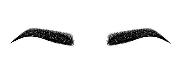 vector library library Vector eyebrows. Eyebrow photos royalty free