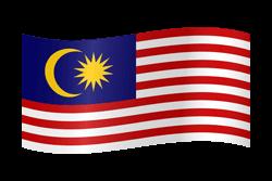 library Malaysia flag vector