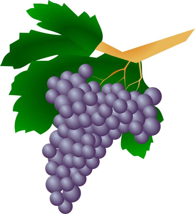 banner library library Red Wine Kyoho Straw wine Grape free commercial clipart